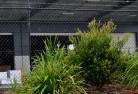 Inala Heights Chainlink fencing 13