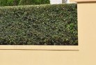 Inala Heights Decorative fencing 30